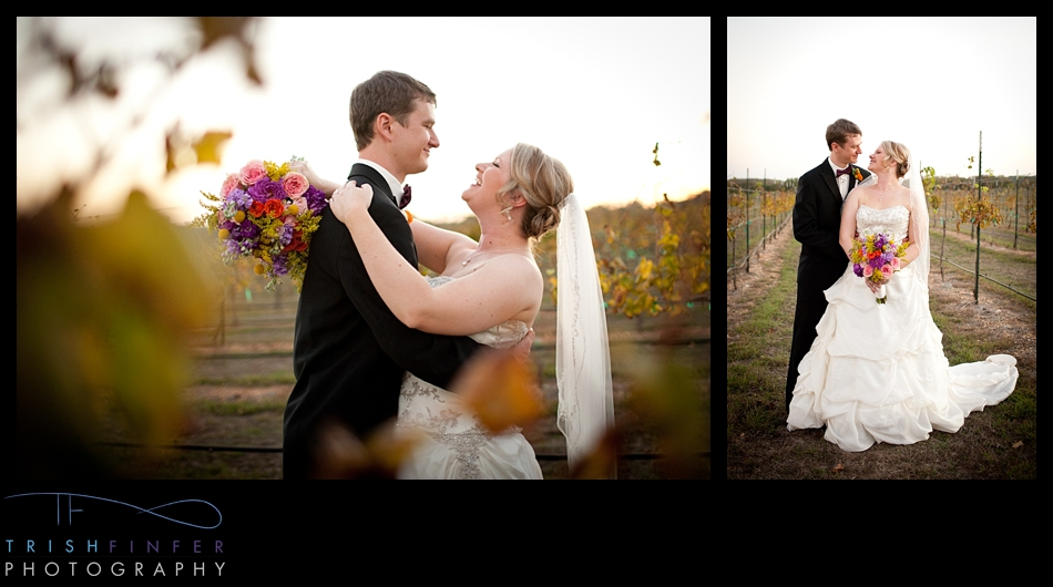 Winery Wedding Portraits Bride Groom